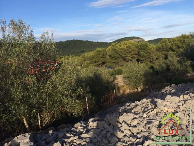 gradevinsko-zemljiste-pov-1343-m2-mjesto-kali-mala-lamjana-na-otoku-ugljanu-1.jpeg