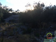 gradevinsko-zemljiste-pov-1343-m2-mjesto-kali-mala-lamjana-na-otoku-ugljanu-6.jpeg thumbnail